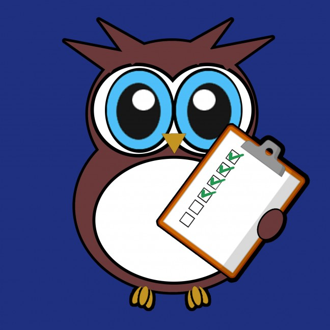 baby owl Reg